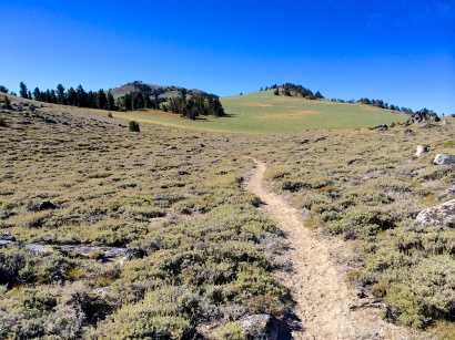 High meadow to Snow Valley Peak