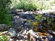 Miller Creek