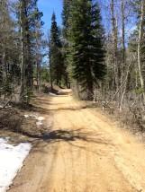 Road to Marlette Saddle