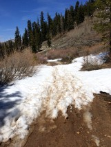 Trail from Marlette Saddle