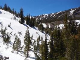 Below Tamarack Peak