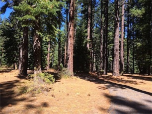 Spooner picnic area - beginning of trail