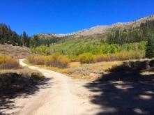 North Canyon Trail