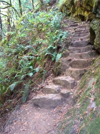 Stone steps can be mossy