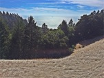 Looking over the Pacific from atop Matt Davis Trail