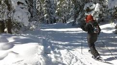 James Joy Trail, beginning part near lodge