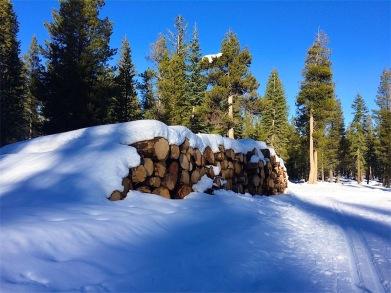 Log pile, great wintery scene