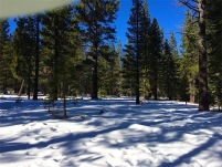 Outskirts of Tahoe Donner