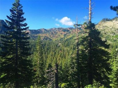 Ridge above Alpine Meadows