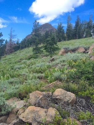 Twin Peaks south peak
