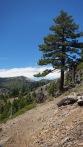 Basin Peak in distance