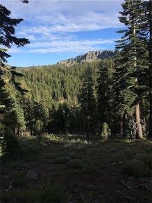 Looking towards Ellis Peak